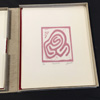 Vignette Livres uniques les labyrinthiens et Lionel Bascoulard IMG_4690